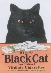 Magnet Black Cat